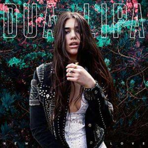 Dua Lipa New Love cover